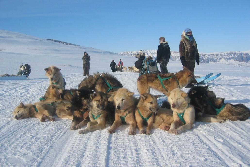 Firmarejse til Grønland